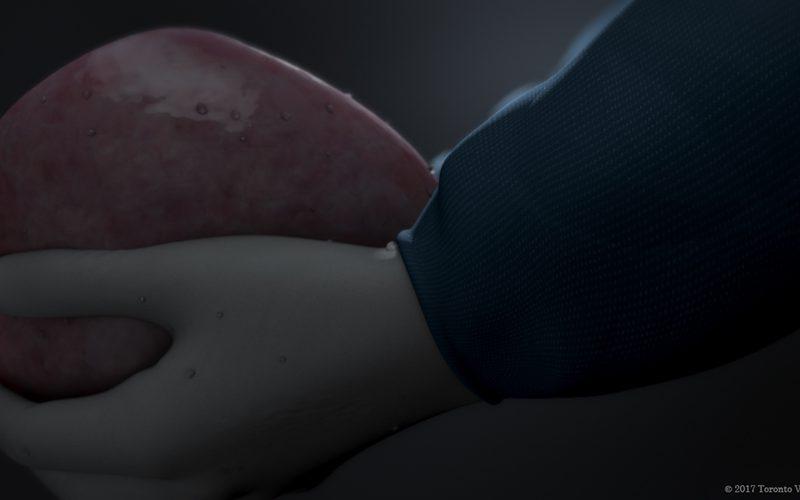 National Organ and Tissue Donation Awareness Week 2019