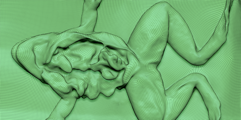 Photogrammetry frog dissection