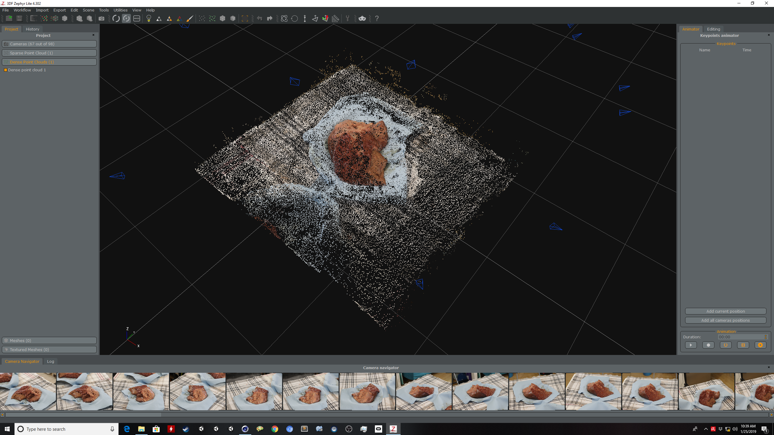 cow liver recon point cloud